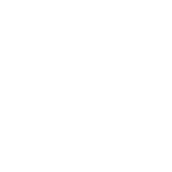 NEC-Displays-Logo-White